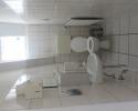 1. DG, WC